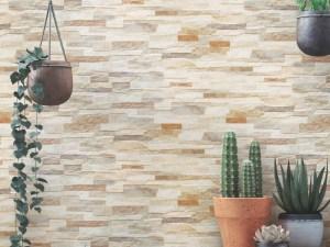 Fachaleta Cerámica Imitación Piedra Andes Mix Mate