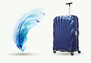 Luggage guides