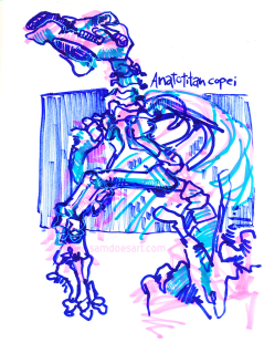Marker and gel pen at the American Museum of Natural History. 2014.