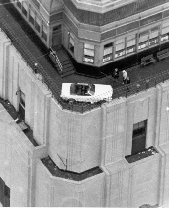 Mustang at the Empire State Building