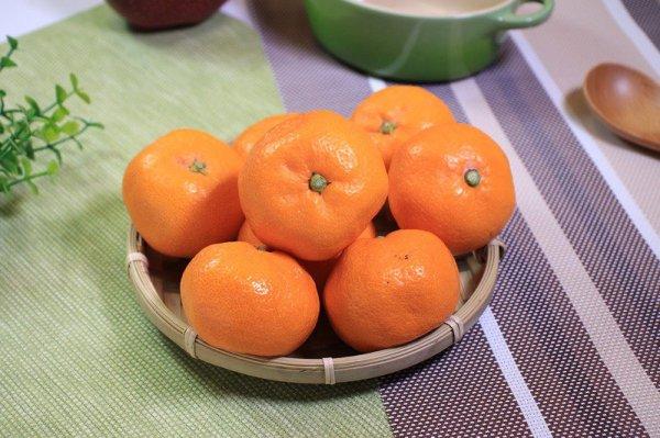 SOGO周年慶主婦的戰場 超市200款日本好物買一送一