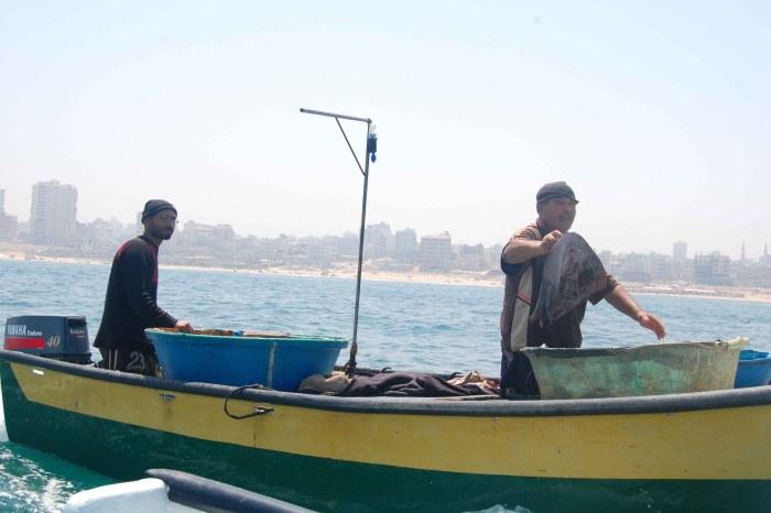 explaining-how-occupation-imacts-fishing