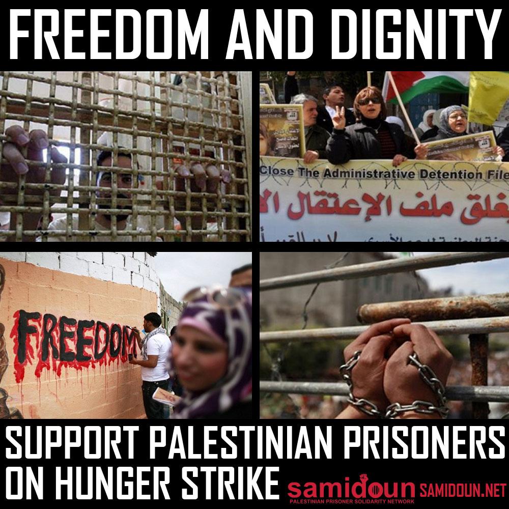 1500 palästinensische Gefangene starten den größten kollektiven Hungerstreik seit Jahren: Unterstützt die Gefangenen und werdet aktiv!