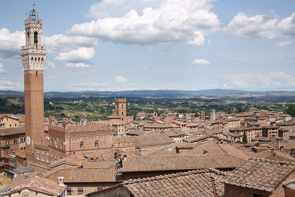 SamiM Adventure study abroad in Siena view of Torre del Mangia from the Siena Duomo