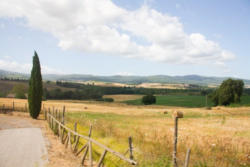 SamiM Adventure study abroad in Siena drive easily around tuscany with car rental