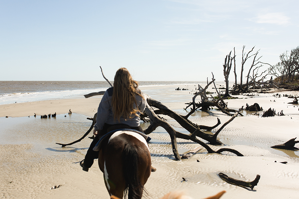 SamiM Adventures Horsing Around on Jekyll Island Three Oaks farm Golden Isles Horse Trail Beach Ride Driftwood Beach