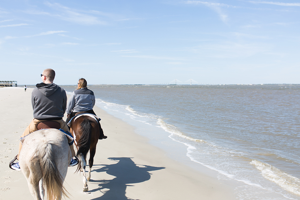 SamiM Adventures Horsing Around on Jekyll Island Three Oaks farm Golden Isles Horse Trail Beach Ride