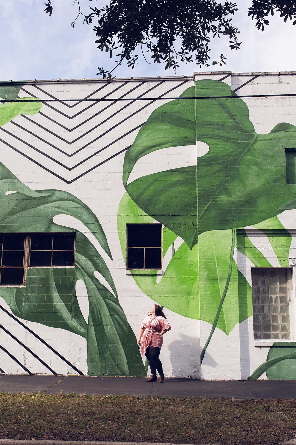 Cool spots for photos in Jacksonville | King Street Monstera Leaf Mural