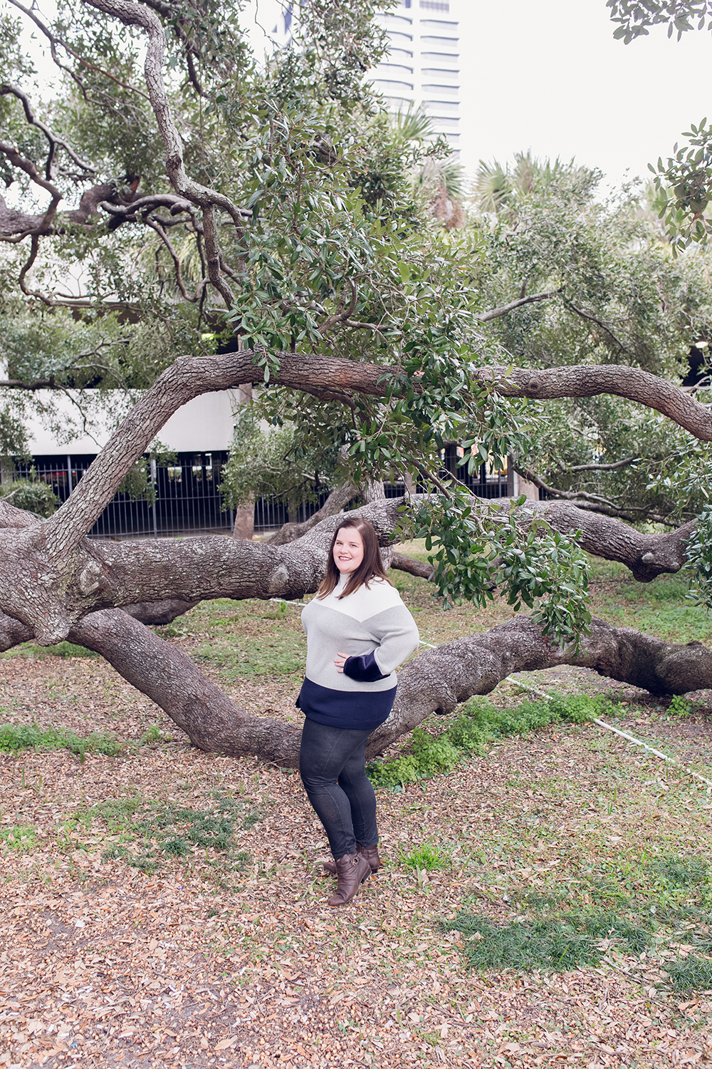 Cool spots for photos in Jacksonville | The Treaty Oak