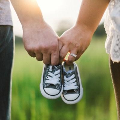 Fertility Management