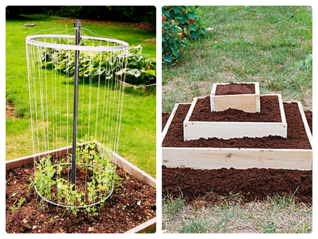 Raised Bed Gardening  The Advantages and Disadvantages  Sam Loves Adventure