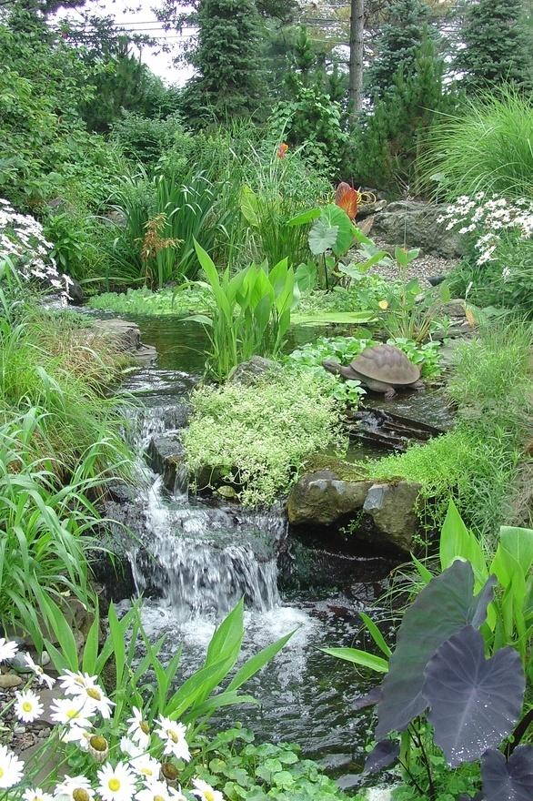 five types of gardening sam