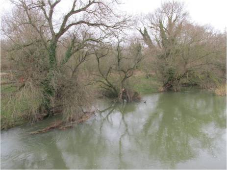 ouse at bromham