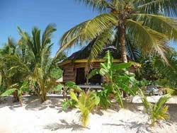 Samoa Hotel - Tanu Beach Fales