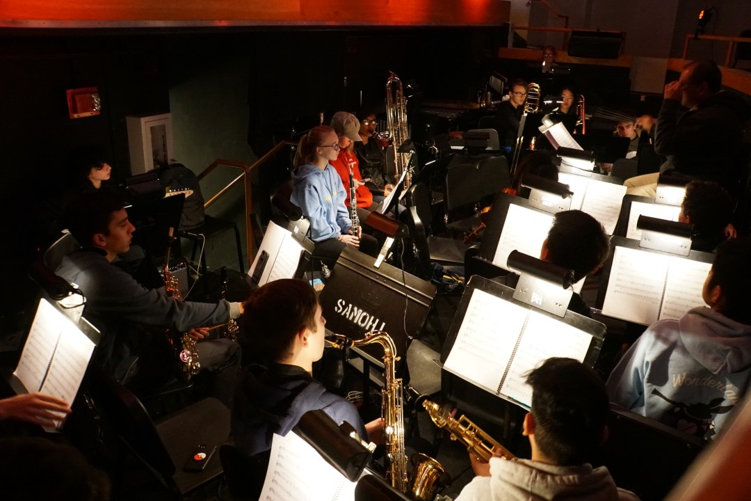 Pit Orchestra Photo 2