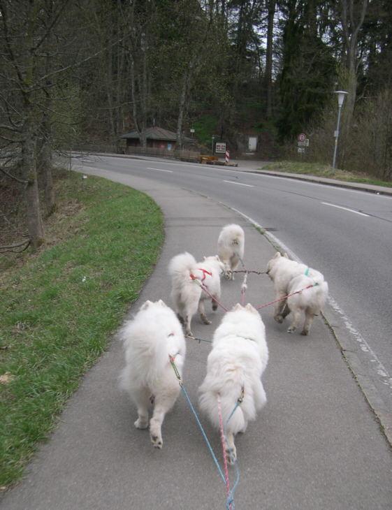 an-der-strase-entlang