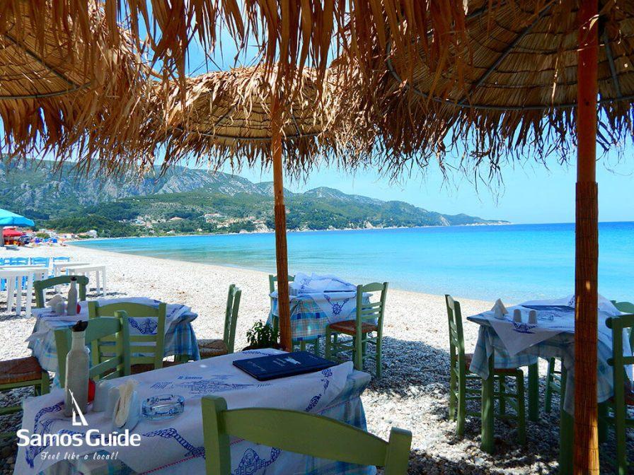 Tarsana-restaurant3