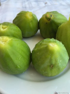 Figs from Stavrinides