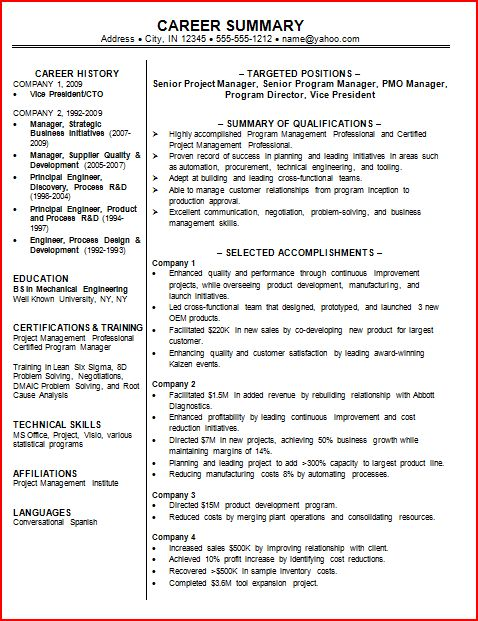 Resume Professional Summary Example - Ex