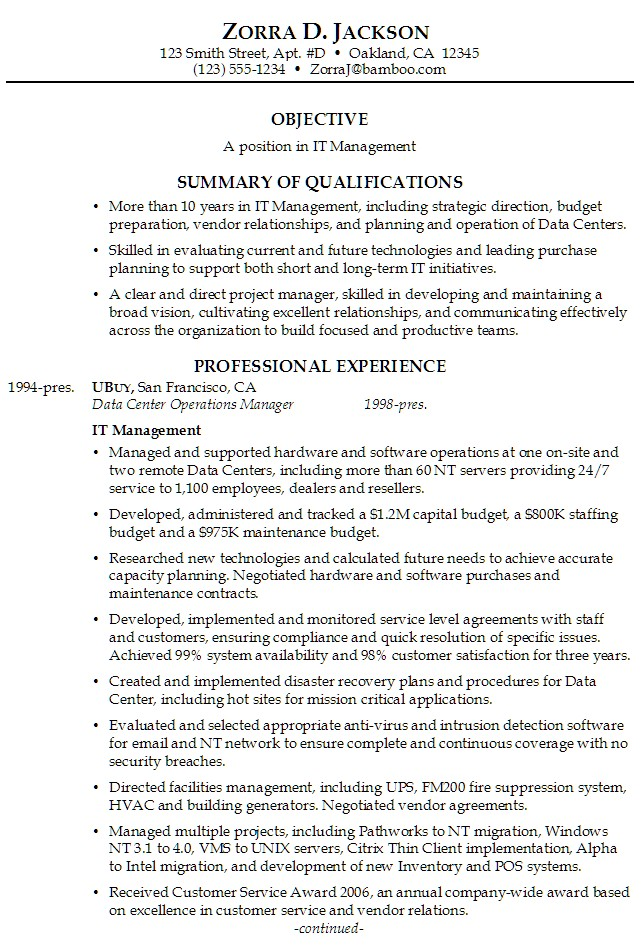 professional business resumes examples