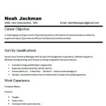 These Are Resume Objective Examples Career Objective Experience
