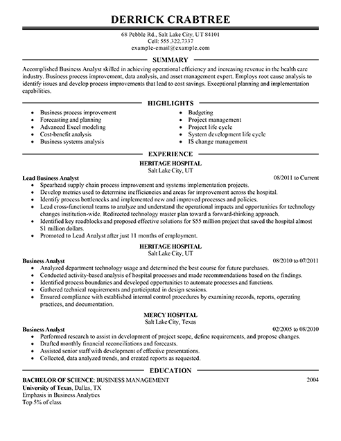 Great Business Analyst Resume Samples Examples Business Analyst