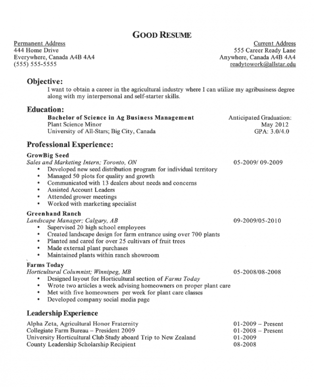 Example Of A Resume Objective
