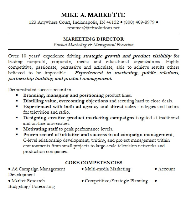 resume professional summary with no experience