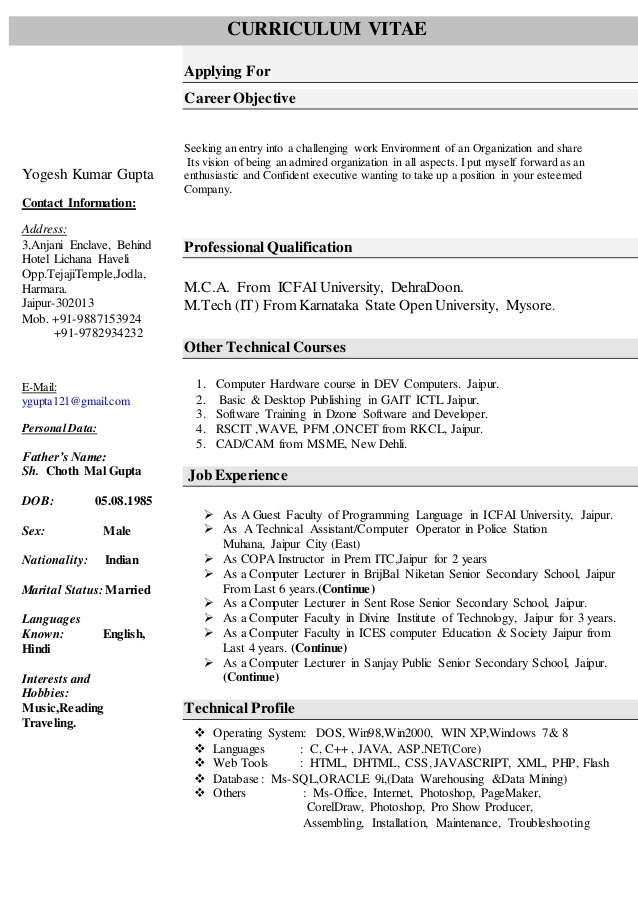 Computer Science Resume Templates SampleBusinessResume