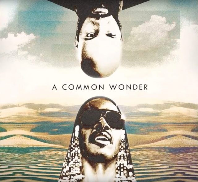 Amerigo Gazaway's New Common x Stevie Wonder Project