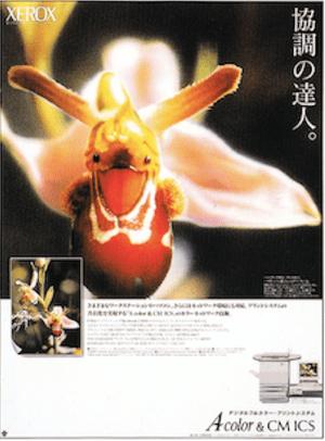 富士ゼロックス Acolor・新聞広告 コピー
