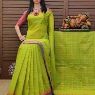 Shashikala - South Cotton Saree