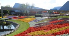 """I would conside events like The Epcot International Flower and Garden Festival is an example of """"Limited Time Magic"""", bt I understand the 2013 Promotion."""