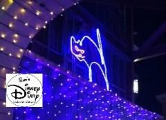 The Black Cat, always Hidden in the Dancing Lights