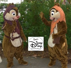 Chip and Dale get character at Star Wars Weekend 2013