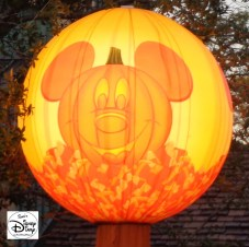Look for the Mickey's Pumpkins, that's where the candy is!