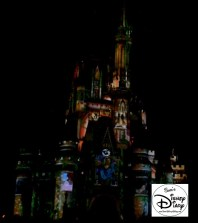 Sams Disney Diary 37 Celebrate The Magic (10)