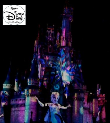 Sams Disney Diary 37 Celebrate The Magic (13)