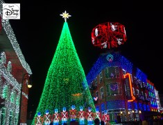The Osborne Lights Signature Tree and Solders