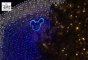 Lots, and Lots of Hidden Mickeys.