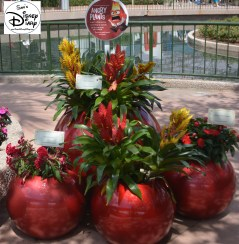 Epcot Flower and Garden Festival - The inside Out Emotion Garden
