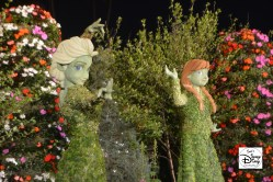 Epcot Flower and Garden Festival - Anna and Elsa Topiaries at night