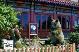 The 2017 Epcot International Flower and Garden Festival - China Pandas celebrating Born in China, the latest Disney Nature release