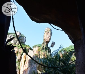 More views from the Standby Queue to Flight of Passage