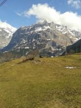 More Suisse (interlaken) 231