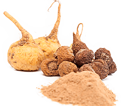 Densely Nutrient Powders (Superfoods)