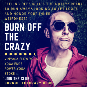 vinyasa yoga sterling dulles ashburn