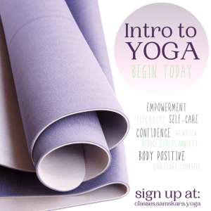 Intro yoga beginners dulles sterling ashburn herndon chantilly