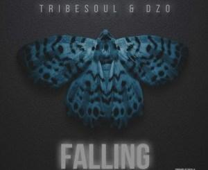 Tribesoul & Dzo – Falling (Original Mix)samsonghiphop