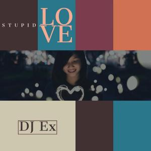 DJ Ex – Stupid Love (Original Mix)samsonghiphop